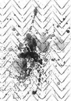 spinato-macro-bianco-e-nero_web